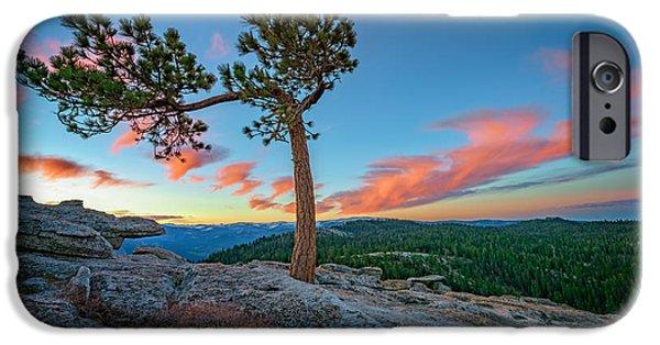 Pines iPhone Cases - Sentinel Dawn iPhone Case by Rick Berk