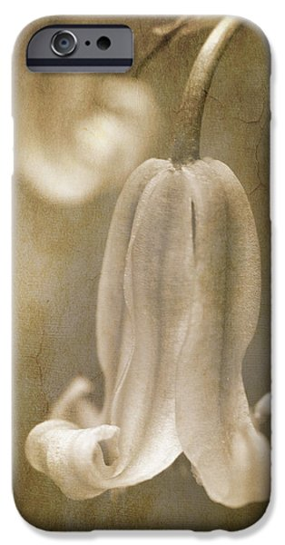 sepia bluebell iPhone Case by Meirion Matthias