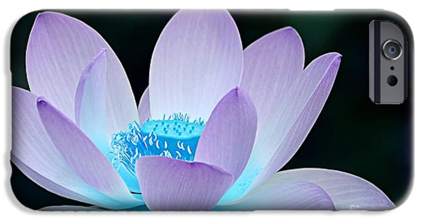 Macro iPhone Cases - Serene iPhone Case by Photodream Art
