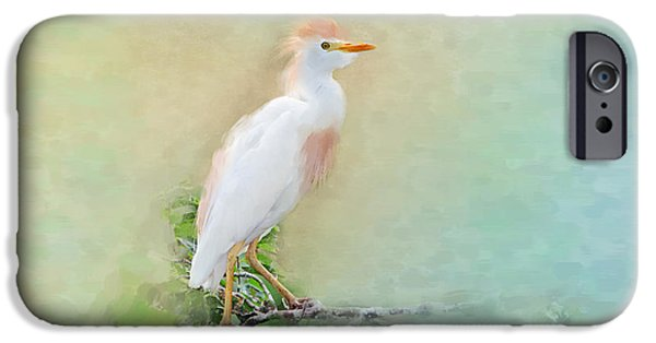 Cattle Egret iPhone Cases - Serenity iPhone Case by Betty LaRue