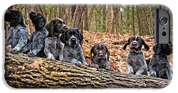 Cute Puppy iPhone Cases - Seven Pups on a Log iPhone Case by Timothy Flanigan
