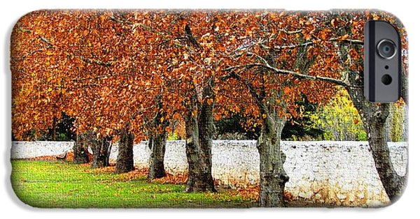 Abstract Digital Pastels iPhone Cases - Seven Trees in Autumn H b iPhone Case by Gert J Rheeders