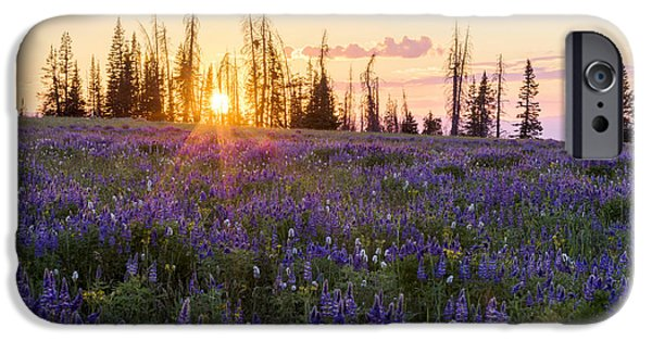 Field. Cloud iPhone Cases - Shades iPhone Case by Chad Dutson