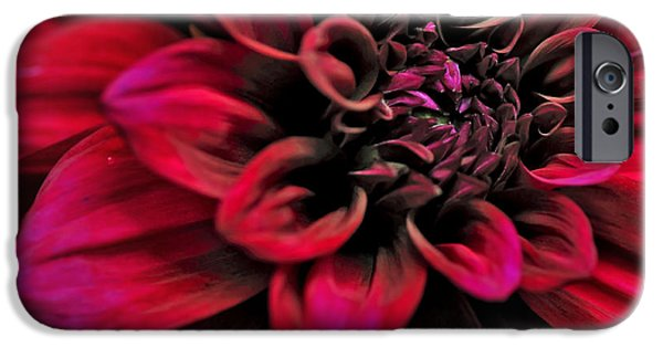 Nature Abstract iPhone Cases - Shades of Red - Dahlia iPhone Case by Kaye Menner