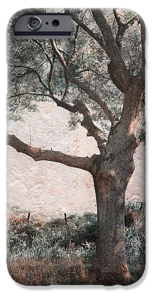 Pastel iPhone Cases - Shadow Tree iPhone Case by Jenny Rainbow