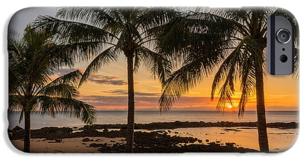 Palm Tree iPhone Cases - Sharks Cove Sunset 4 - Oahu Hawaii iPhone Case by Brian Harig
