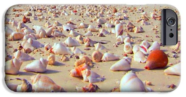 Dogs iPhone Cases - She sells sea shells at the sea shore Seaweed and Sea Shells Beaches of Zanzibar Tanzania iPhone Case by Navin Joshi