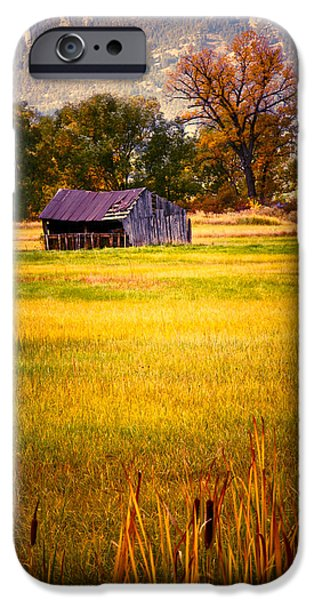Shed in Sunlight iPhone Case by Marilyn Hunt