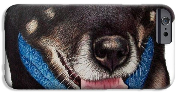 Husky Drawings iPhone Cases - Sheena iPhone Case by Danielle R T Haney