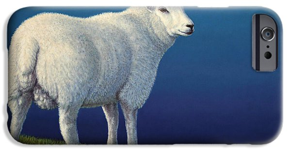 Mammal iPhone Cases - Sheep at the edge iPhone Case by James W Johnson