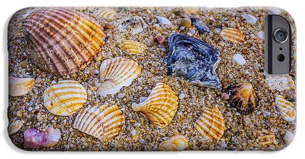 Nature Abstract iPhone Cases - Shells Fragments iPhone Case by Carlos Caetano