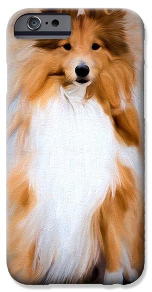 Dog Close-up Digital Art iPhone Cases - SHETLAND SHEEPDOG - Sheltie iPhone Case by EricaMaxine  Price
