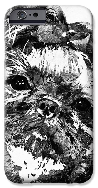 Puppies iPhone Cases - Shih Tzu Dog Art In Black And White by Sharon Cummings iPhone Case by Sharon Cummings