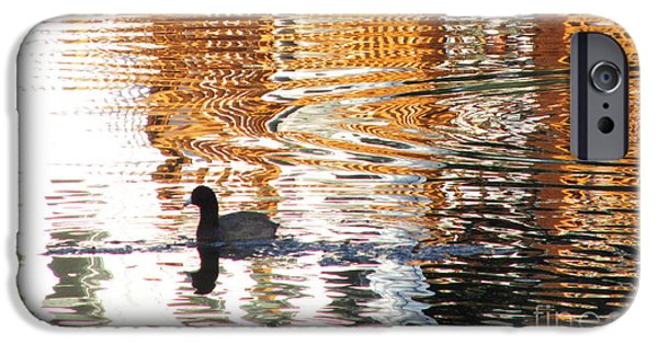 Sea Birds iPhone Cases - Shimmering Golden Pond iPhone Case by Sharon Nelson-Bianco