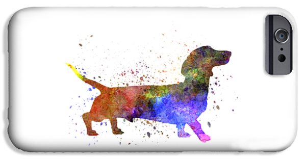 Dogs iPhone Cases - Short Haired Dachshund 01 in watercolor iPhone Case by Pablo Romero