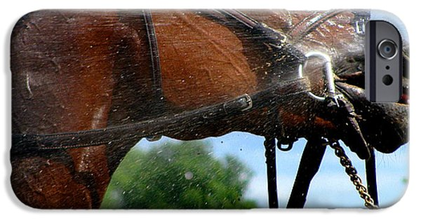 Horse Racing Photographs iPhone Cases - Shower Me  iPhone Case by Colleen Kammerer
