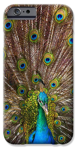 Showing Your Colors iPhone Case by Mike  Dawson