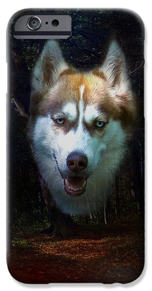 Huskies Digital Art iPhone Cases - Siberian Husky iPhone Case by Brian Roscorla