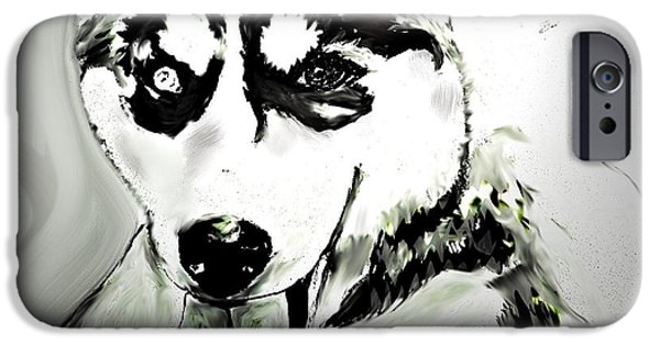 Husky Drawings iPhone Cases - Siberian Husky iPhone Case by Crystal Webb
