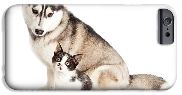 Cute Puppy iPhone Cases - Siberian Husky Dog Sitting With Little Kitten iPhone Case by Susan  Schmitz