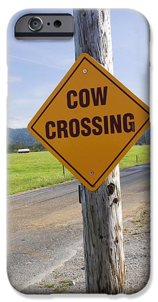 Traffic Sign iPhone Cases - Sign Cow Crossing iPhone Case by Inga Spence