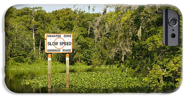 St. Johns River iPhone Cases - Sign On The St. Johns River iPhone Case by Inga Spence
