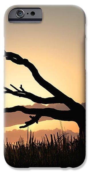 Silhouette iPhone Case by Bob Orsillo