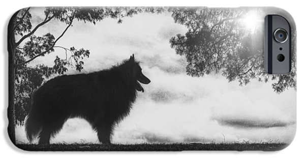 Black Dog iPhone Cases - Silhouette of a Belgian Sheepdog iPhone Case by Wolf Shadow  Photography