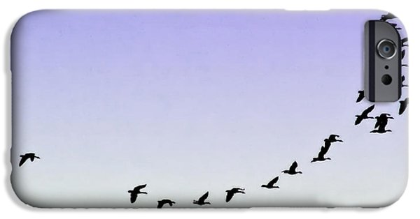 Best Sellers -  - Destiny iPhone Cases - Silhouetted Flight iPhone Case by Brian Wallace