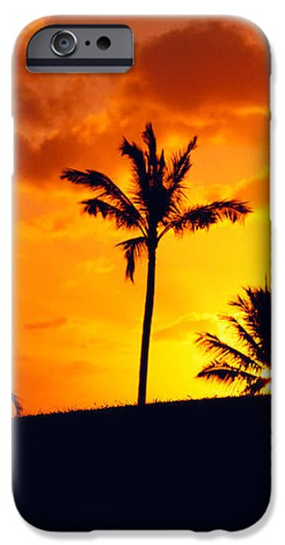 Silhouetted Golfer iPhone Case by Dana Edmunds - Printscapes