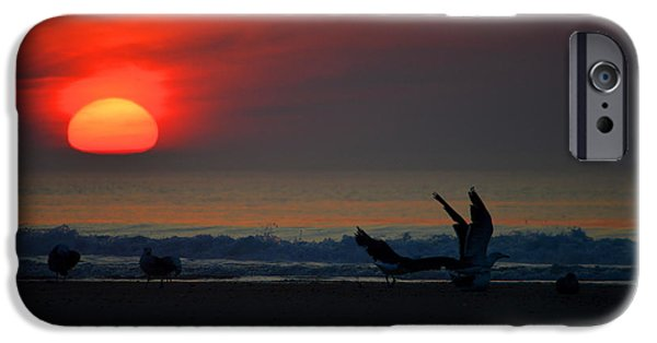 Sea Birds iPhone Cases - Silky Red Sunrise iPhone Case by Dianne Cowen