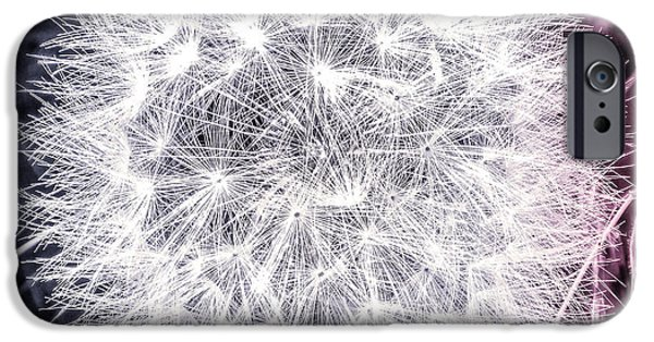 Meadow Photographs iPhone Cases - Silver Gray Dandy Lion iPhone Case by Mona Stut