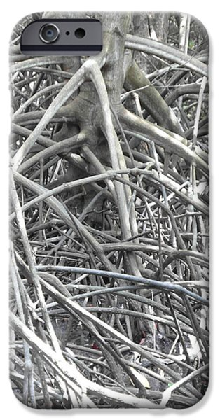 Mangrove Forest iPhone Cases - Silver Mangrove iPhone Case by Ian Scholan