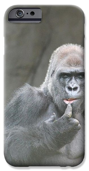 Thinking Pyrography iPhone Cases - Silverback  iPhone Case by Patricia M