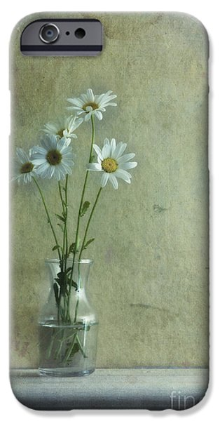 Glass Vase iPhone Cases - Simply Daisies iPhone Case by Priska Wettstein