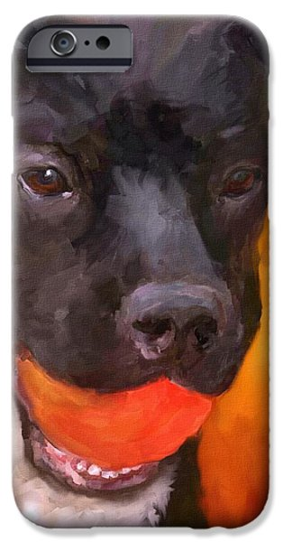 Black Dog iPhone Cases - Simply Orange iPhone Case by Jai Johnson