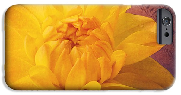 Flora Mixed Media iPhone Cases - Sinfonie iPhone Case by Angela Doelling AD DESIGN Photo and PhotoArt