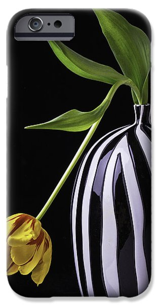 Wet Petals iPhone Cases - Single Tulip In Vase iPhone Case by Garry Gay