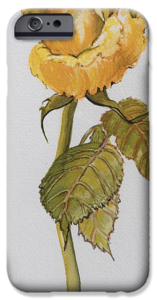Rose iPhone Cases - Single Yellow Rose iPhone Case by Joan Thewsey