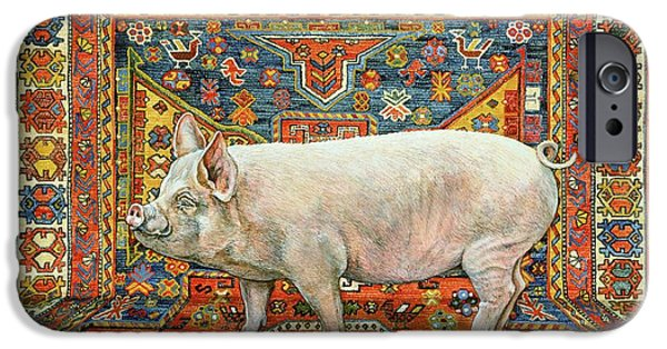 Farm Stand iPhone Cases - Singleton Carpet Pig iPhone Case by Ditz