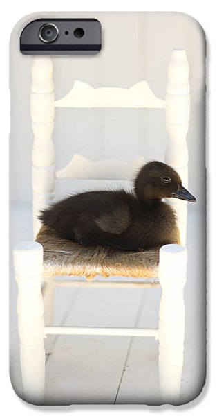 Bathroom Prints iPhone Cases - Sitting Duck iPhone Case by Amy Tyler