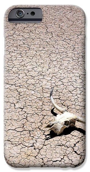 Skull in Desert iPhone Case by Kelley King