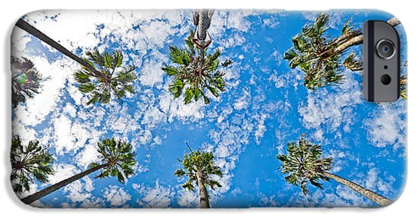 Palm Tree iPhone Cases - Skyward Palms iPhone Case by Az Jackson