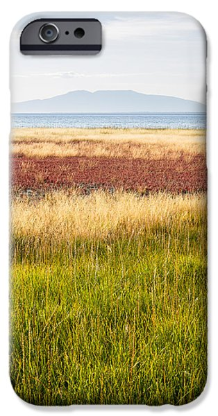 Pastel iPhone Cases - Sleeping Lady in Summer iPhone Case by Tim Newton
