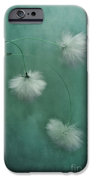 Flora Photographs iPhone Cases - Sleepy Heads iPhone Case by Priska Wettstein