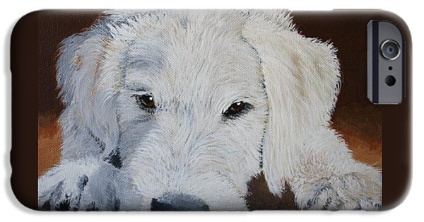 Puppies iPhone Cases - Sleepy Labradoodle Pup iPhone Case by Yvonne Carter