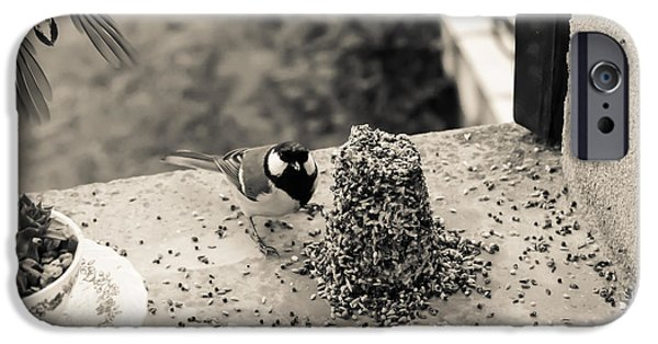 Feeding Birds iPhone Cases - Small Birds Eating iPhone Case by Nomad Art And  Design