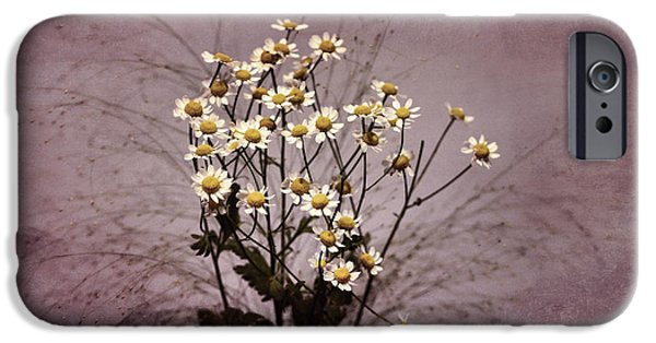Small iPhone Cases - Small flowers oOo iPhone Case by SK Pfphotography