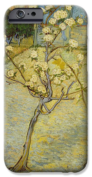 Pear Tree Paintings iPhone Cases - Small pear tree in blossom iPhone Case by Vincent van Gogh
