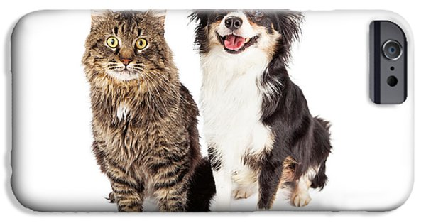 Mixed Breed iPhone Cases - Smiling Chihuahua Mixed Breed Dog and Cat Together iPhone Case by Susan  Schmitz